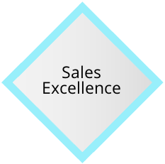 GEM - Sales Excellence